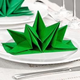 12 serviettes pliées, vert