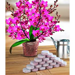 20tablettes d'engrais pour orchidées