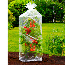 2 housses pour plants de tomates