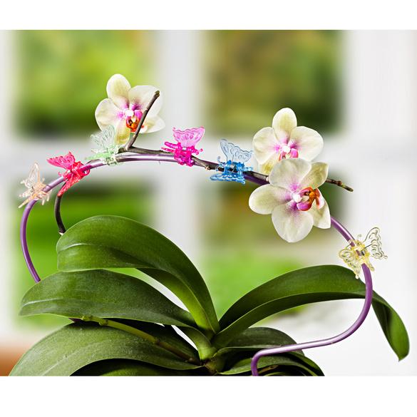 6 clips pour plantes « Papillons »