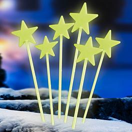 6piquets Étoile
