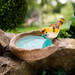 Abreuvoir-baignoire à oiseaux