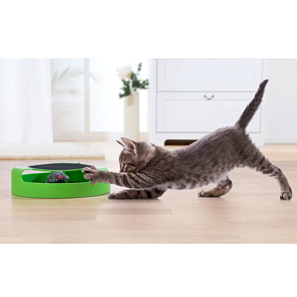 Au chat et à la souris : le jeu pour chat