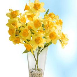 """Bouquet """"Jonquilles"""""""