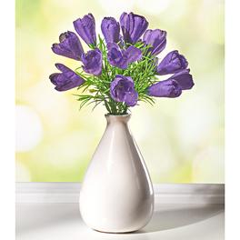 Bouquet de crocus, violet