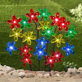 Bouquet de fleurs solaires