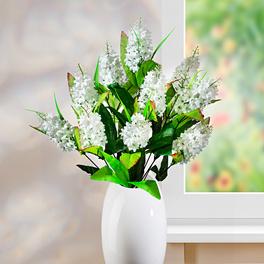 Bouquet de lilas, blanc