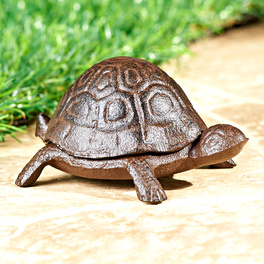 Cache-clef Tortue
