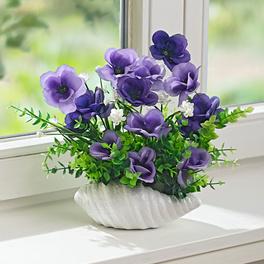 Composition florale en pot