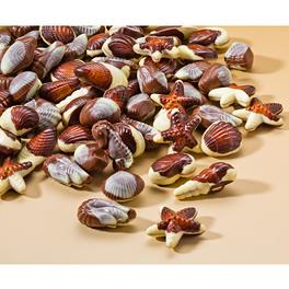 Coquillages en chocolat belge