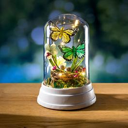 Déco en verre avec LED et papillons