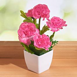 Fleur en pot, rose