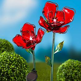 Fleur solaire, rouge