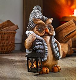 Hibou d'hiver avec lanterne