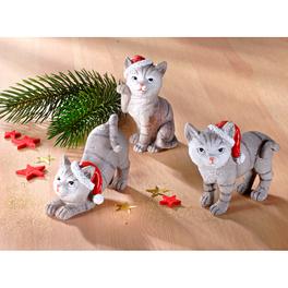 Lot de 3 chatons