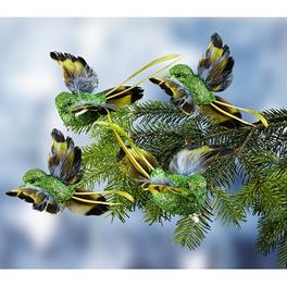 Lot de 4 oiseaux, vert