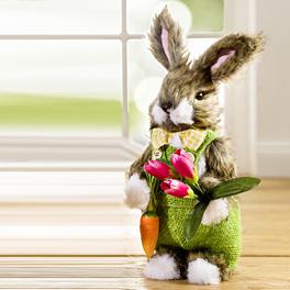Monsieur Lapin et ses tulipes
