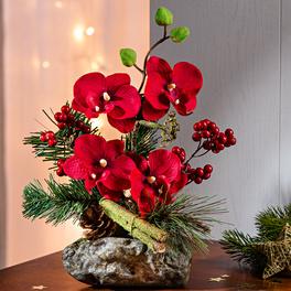 Orchidée sur pierre, rouge