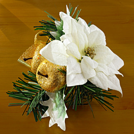 Poinsettia blanc (Stick)