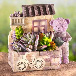 Pot de fleurs ours, violet