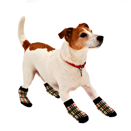 Socquettes à carreaux pour chien, grand modèle
