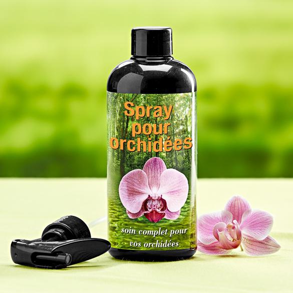 Spray pour orchidées