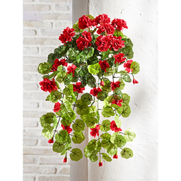 Suspension Géraniums, rouge