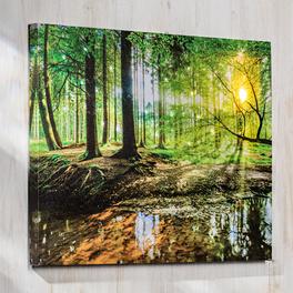 Tableau LED Forêt