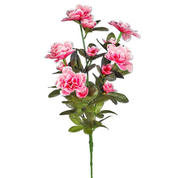 Bouquet d'azalées