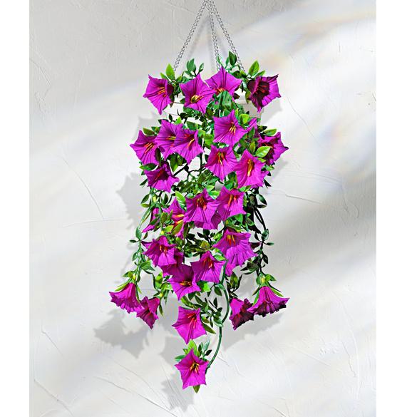 Suspension pétunias, violet