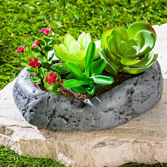 Jardin de rocaille à cactus