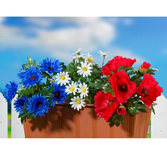 fleurs pour jardini re vitrine magique. Black Bedroom Furniture Sets. Home Design Ideas
