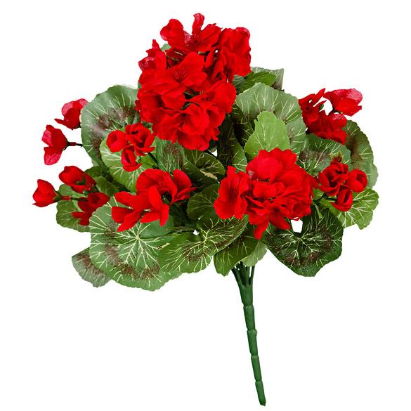 Bouquet de géraniums