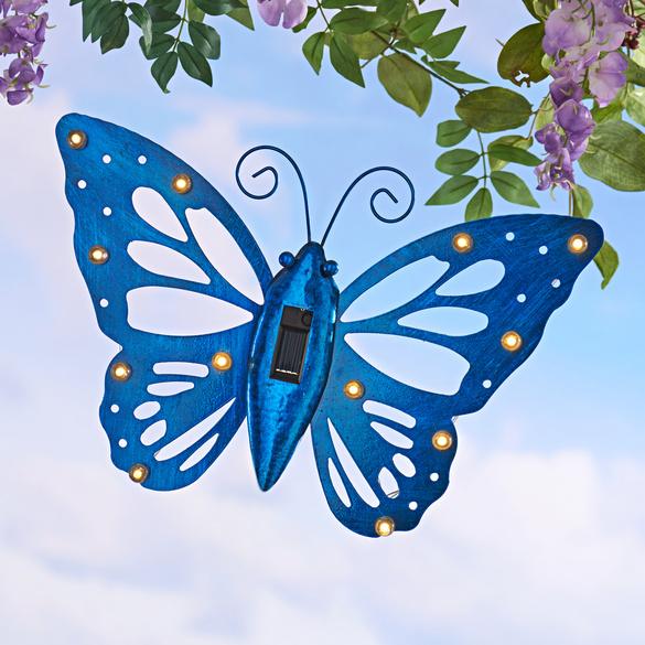 Papillon, bleu