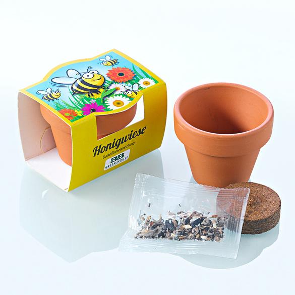 Kit de culture Champ de miel