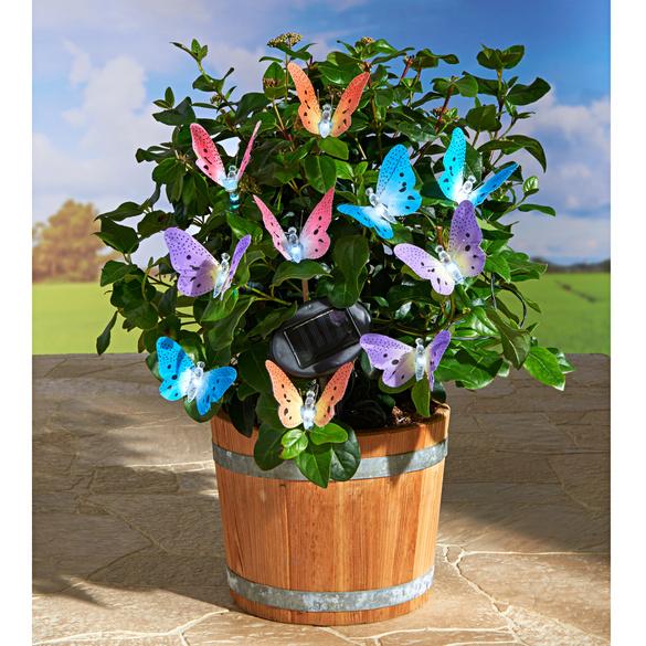 Guirlande solaire Papillon