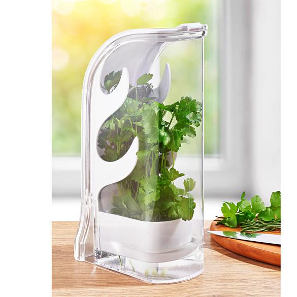 Boîte fraîcheur pour herbes aromatiques