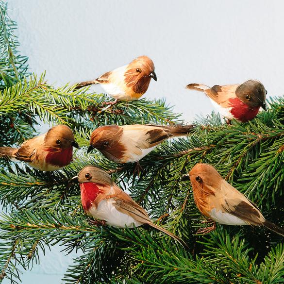Lot de 6 oiseaux