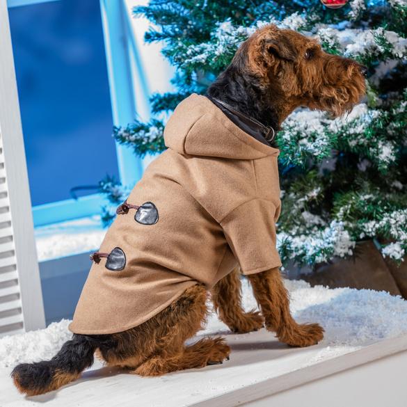 Manteau pour chien, petit