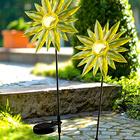 Tournesol solaire