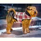 Manteau pour chien L