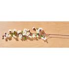 Branche de pommier fleurie, blanc