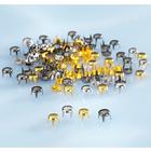 500 rivets de remplacement