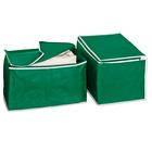 Lot de 2 boîtes de rangement, vert