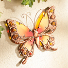 Papillon 25 cm