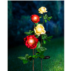 "Lampe solaire ""Rose"", rouge"