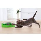 Au chat et à la souris: le jeu pour chat