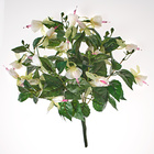 Fuchsia, blanc/rose