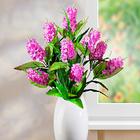 Bouquet de lilas, violet clair