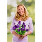 Bouquet de lilas, violet